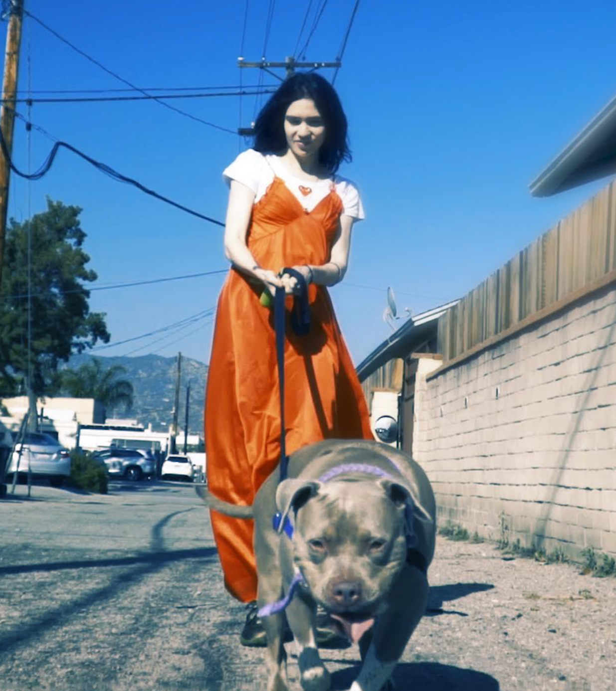 Grimes with dog profile version blog
